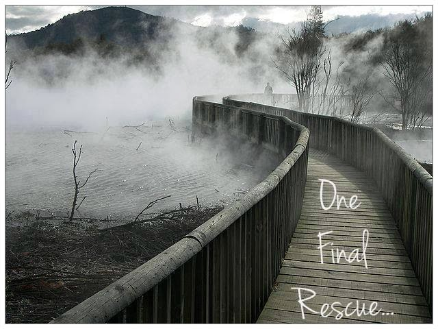 Image result for rescuer at the rainbow bridge