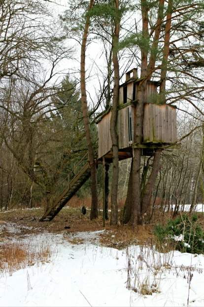 treehouse-255518_1280.jpg
